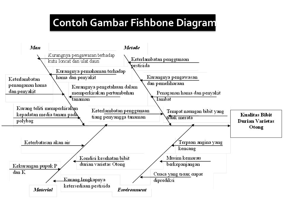 Contoh fishbone diagram 28 images continuous improvement analisa contoh ccuart Image collections