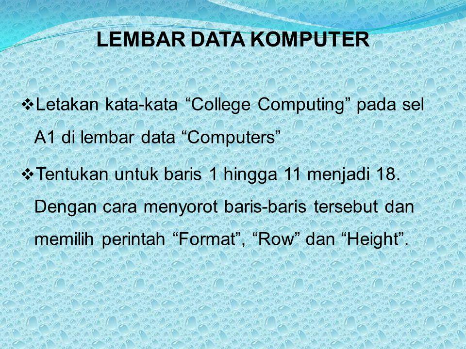 LEMBAR DATA KOMPUTER Letakan kata-kata College Computing pada sel A1 di lembar data Computers