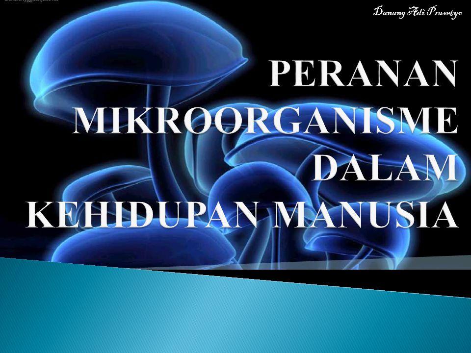 PERANAN MIKROORGANISME DALAM KEHIDUPAN MANUSIA