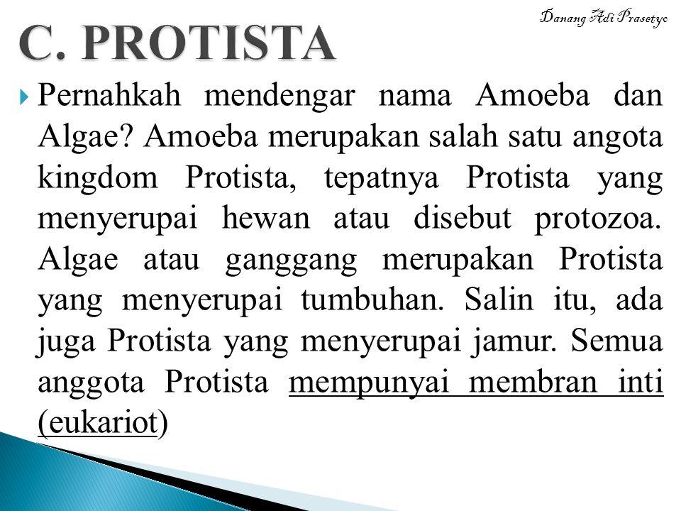 C. PROTISTA Danang Adi Prasetyo.