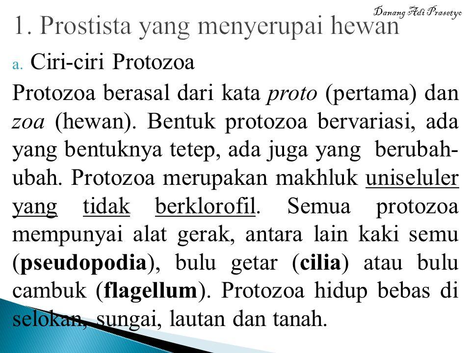 1. Prostista yang menyerupai hewan