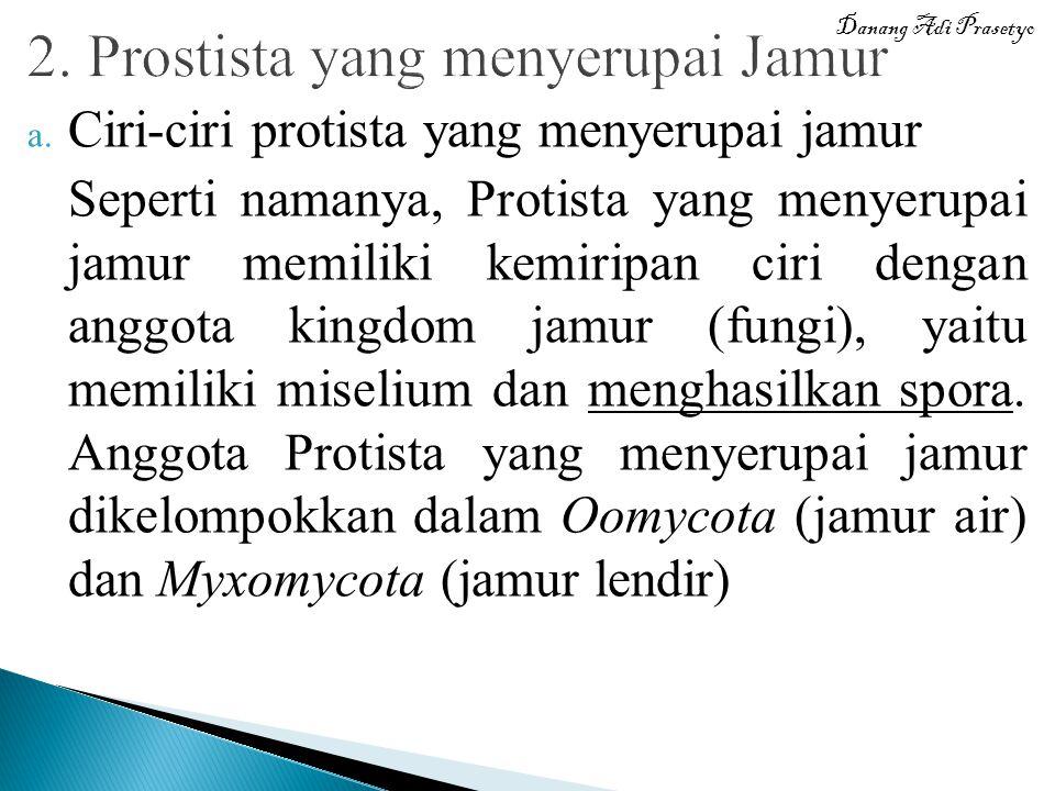 2. Prostista yang menyerupai Jamur