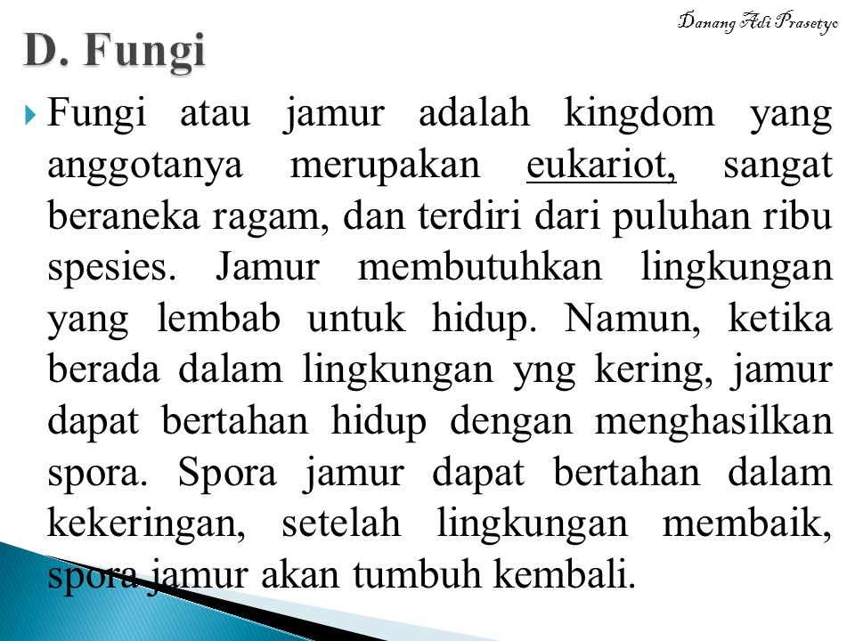 D. Fungi Danang Adi Prasetyo.