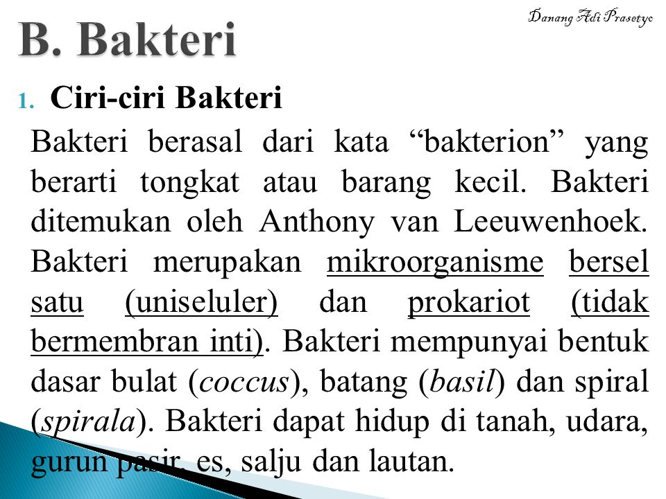 B. Bakteri Ciri-ciri Bakteri