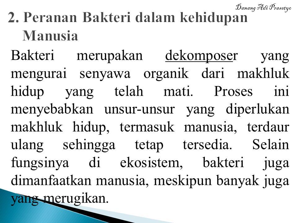 2. Peranan Bakteri dalam kehidupan Manusia