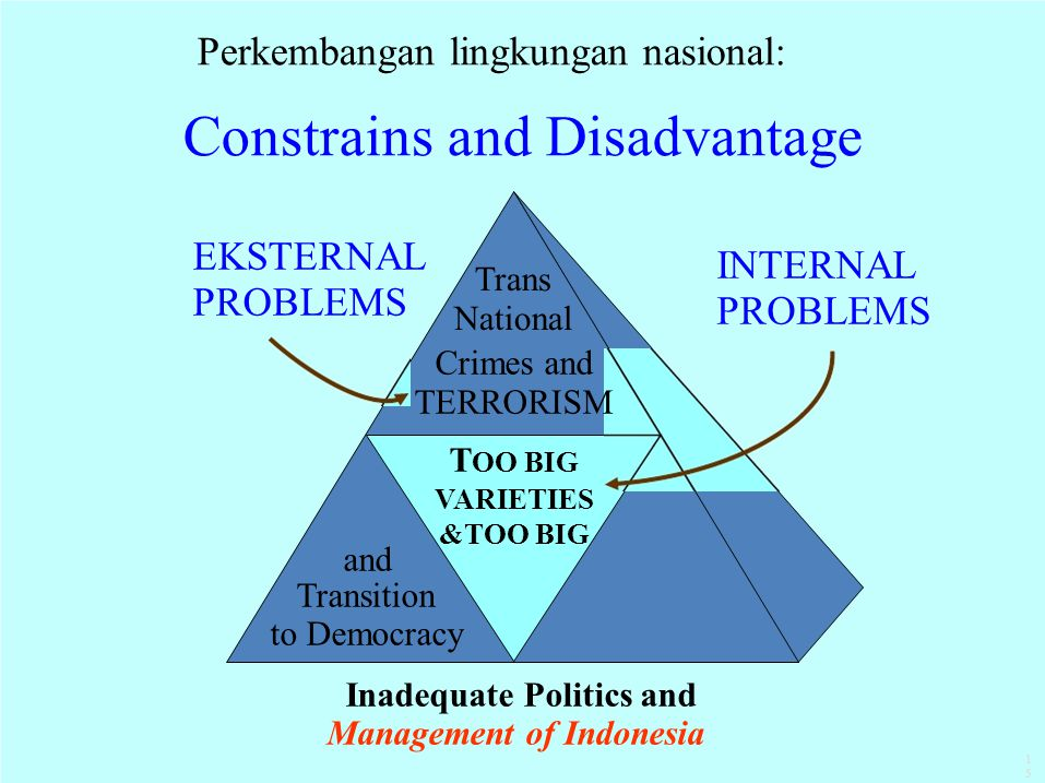 Constrains and Disadvantage