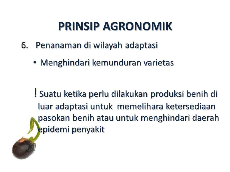 PRINSIP AGRONOMIK Penanaman di wilayah adaptasi. Menghindari kemunduran varietas.