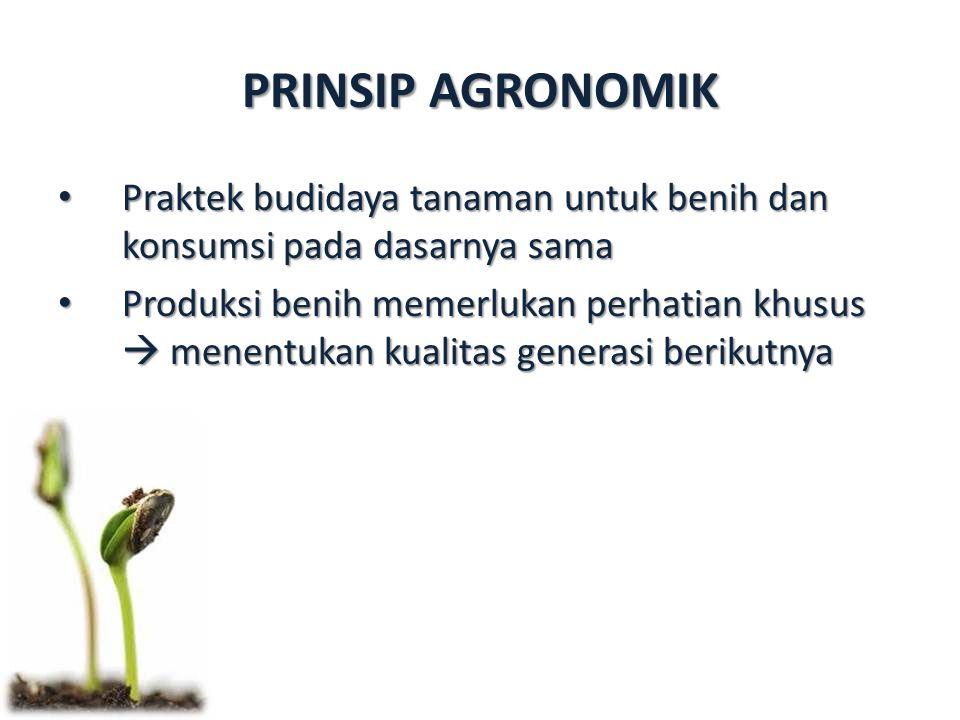 PRINSIP AGRONOMIK Praktek budidaya tanaman untuk benih dan konsumsi pada dasarnya sama.