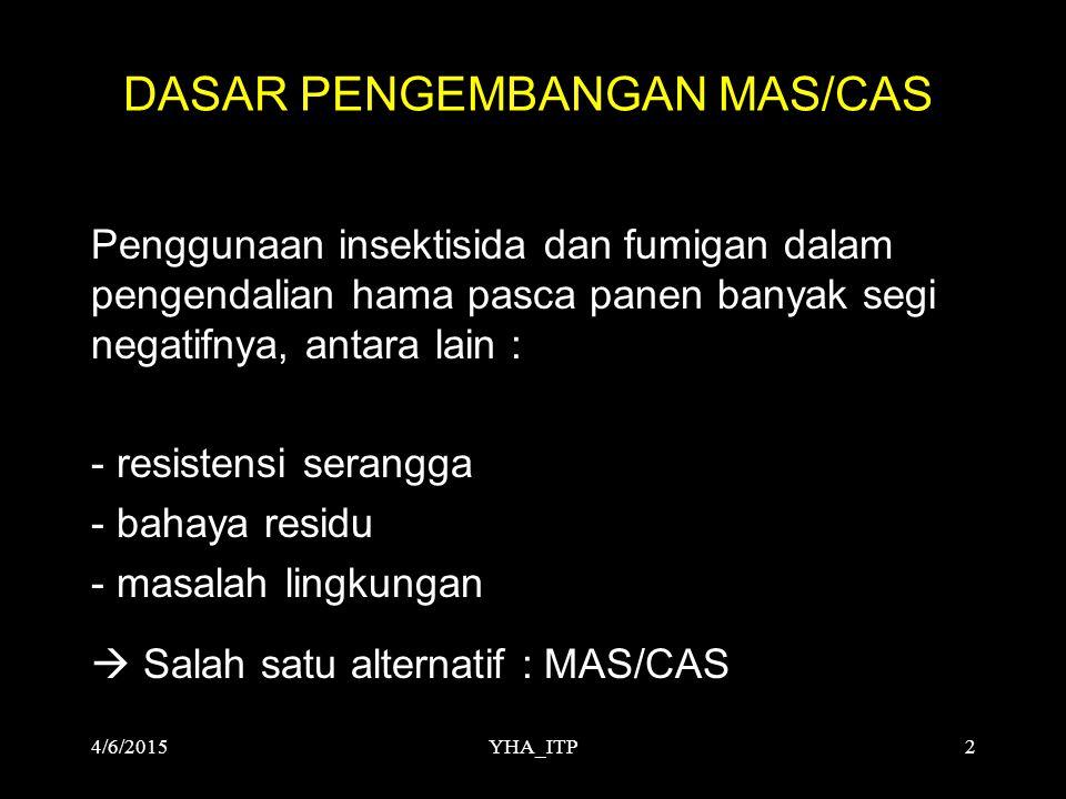 DASAR PENGEMBANGAN MAS/CAS