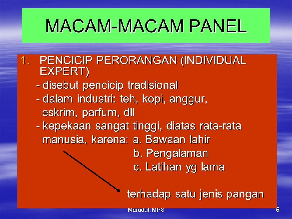 MACAM-MACAM PANEL PENCICIP PERORANGAN (INDIVIDUAL EXPERT)