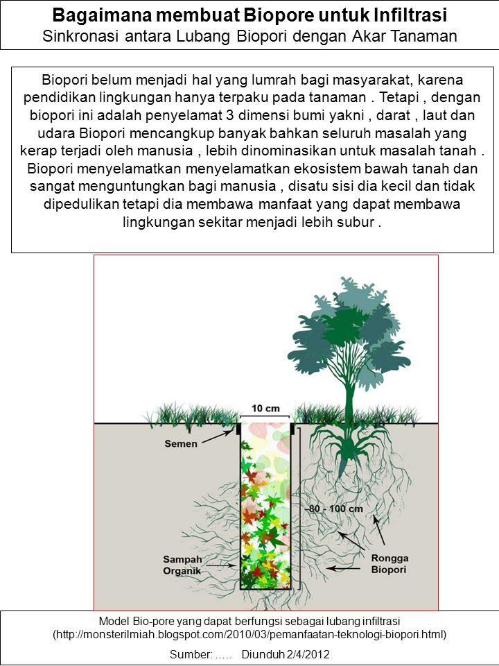 Bagaimana membuat Biopore untuk Infiltrasi