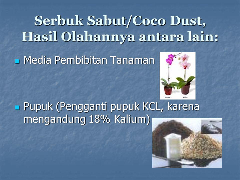 Serbuk Sabut/Coco Dust, Hasil Olahannya antara lain: