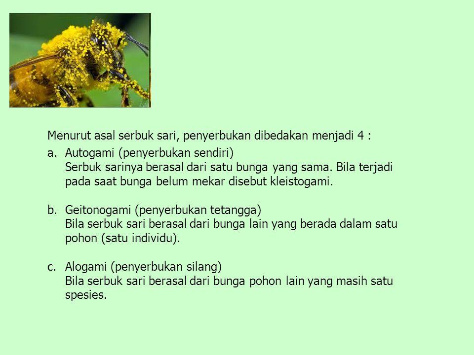 Menurut asal serbuk sari, penyerbukan dibedakan menjadi 4 :