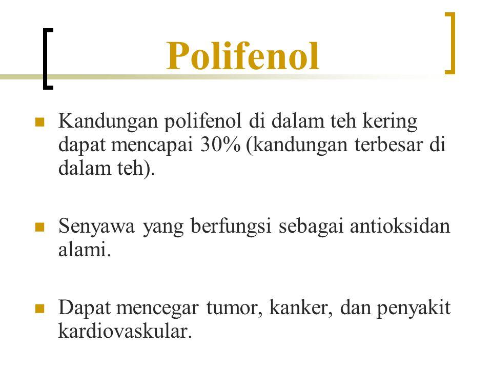 Polifenol Kandungan polifenol di dalam teh kering dapat mencapai 30% (kandungan terbesar di dalam teh).