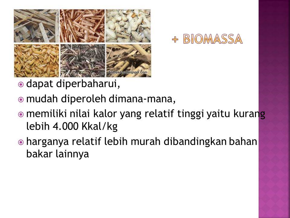 + biomassa dapat diperbaharui, mudah diperoleh dimana-mana,