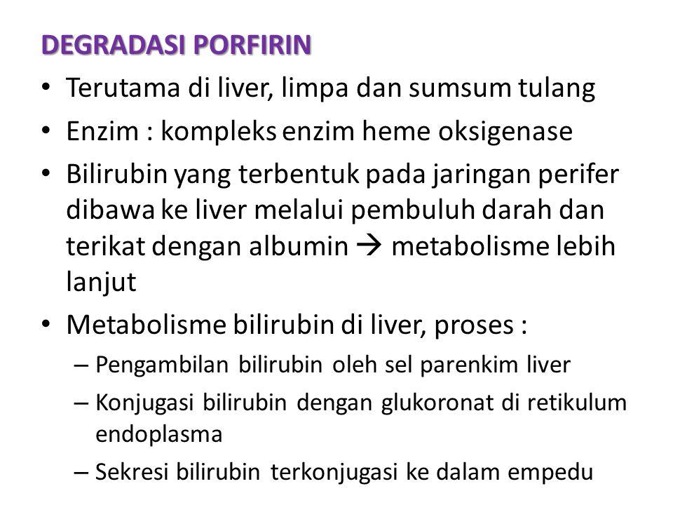 Terutama di liver, limpa dan sumsum tulang