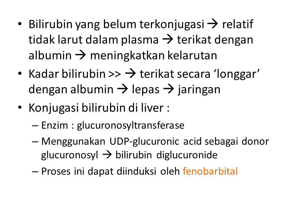 Konjugasi bilirubin di liver :