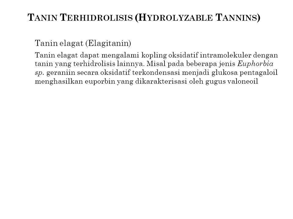 Tanin Terhidrolisis (Hydrolyzable Tannins)
