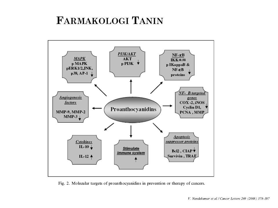 Farmakologi Tanin