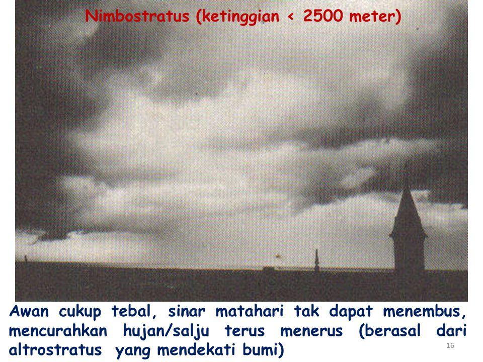 Nimbostratus (ketinggian ‹ 2500 meter)