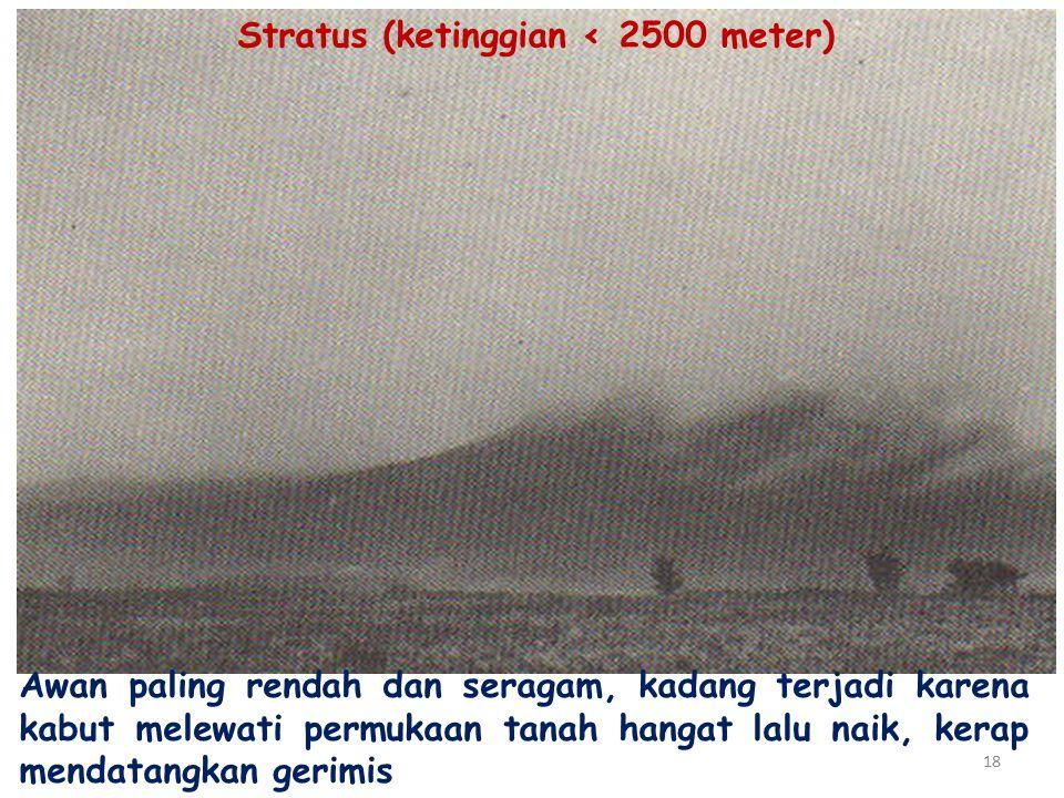 Stratus (ketinggian ‹ 2500 meter)