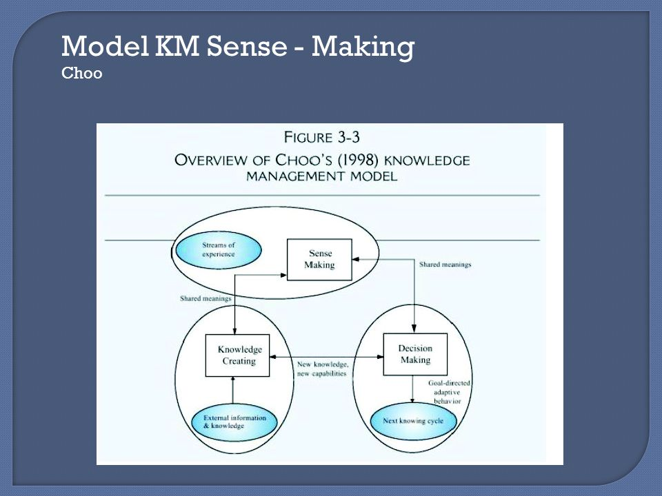 Model KM Sense - Making Choo