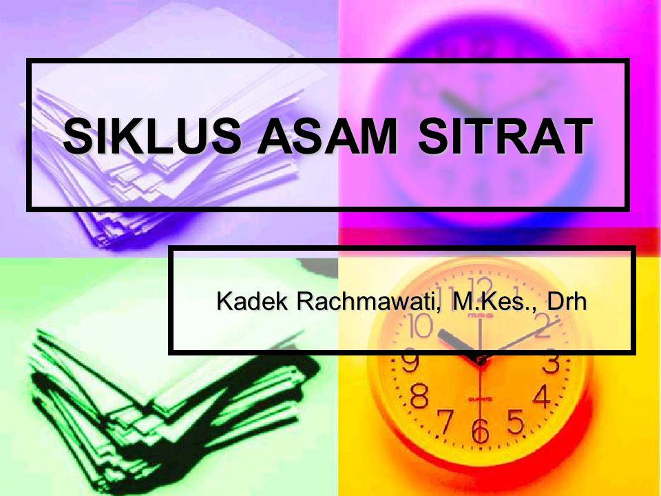 Kadek Rachmawati, M.Kes., Drh