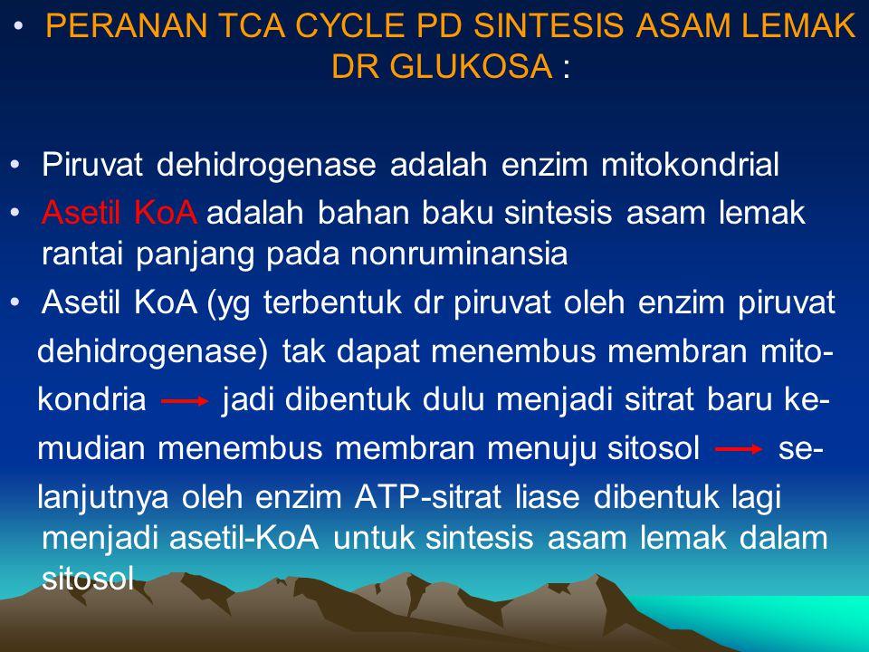 PERANAN TCA CYCLE PD SINTESIS ASAM LEMAK DR GLUKOSA :