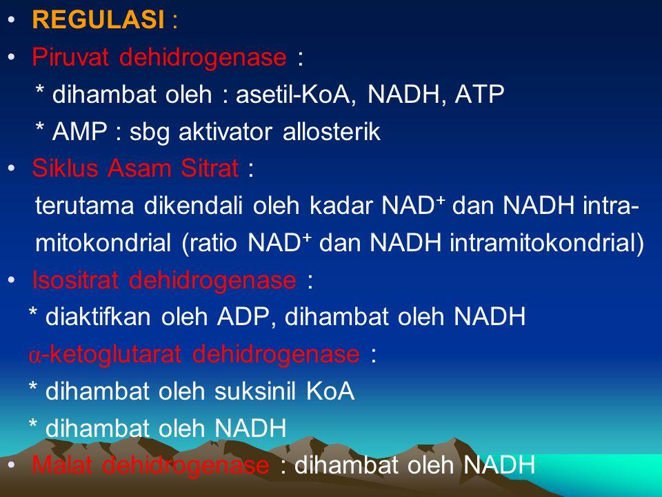 REGULASI : Piruvat dehidrogenase : * dihambat oleh : asetil-KoA, NADH, ATP. * AMP : sbg aktivator allosterik.
