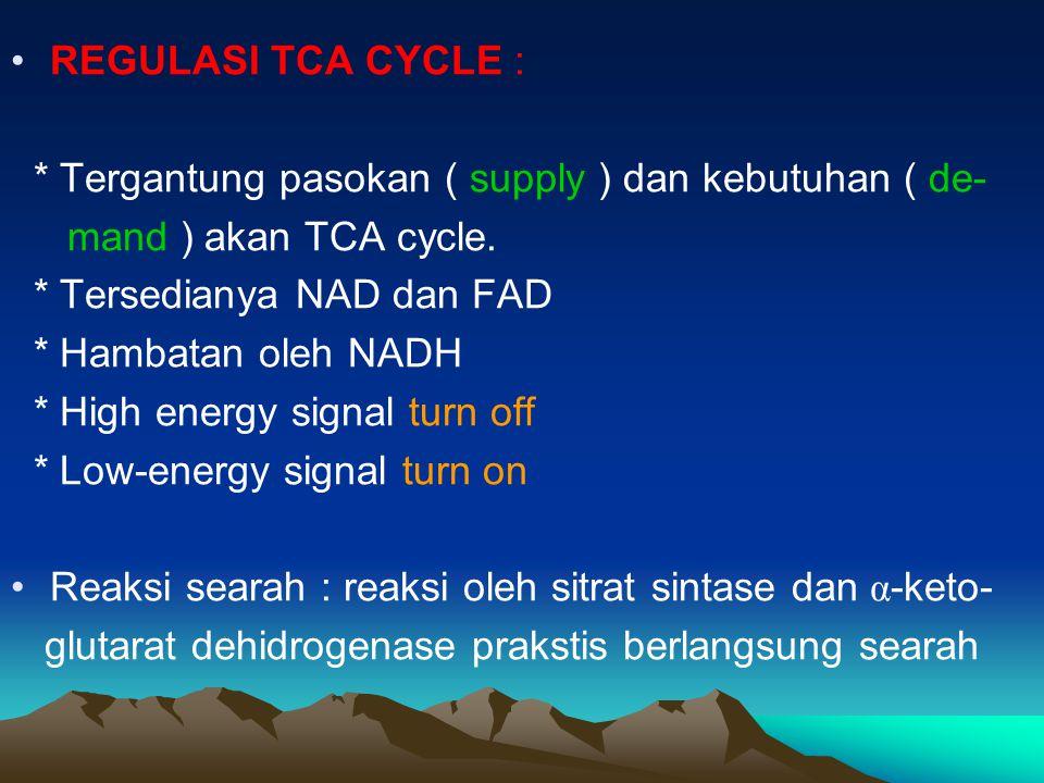REGULASI TCA CYCLE : * Tergantung pasokan ( supply ) dan kebutuhan ( de- mand ) akan TCA cycle. * Tersedianya NAD dan FAD.
