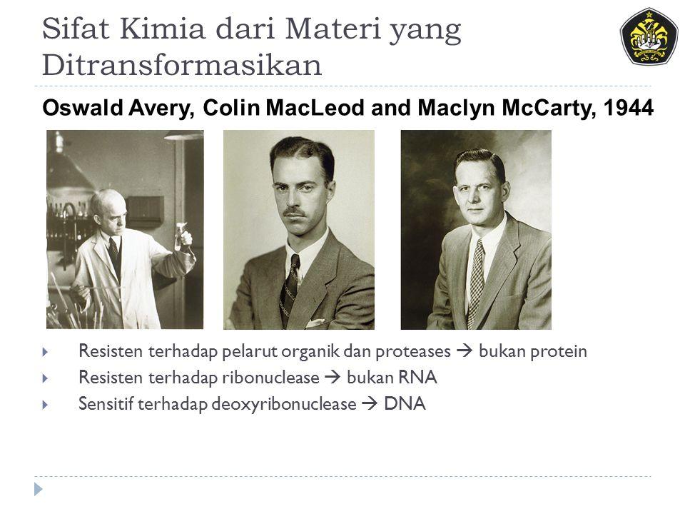 Sifat Kimia dari Materi yang Ditransformasikan