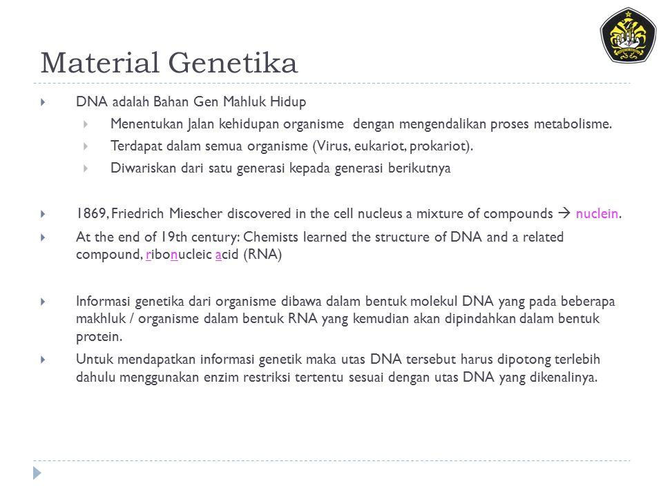 Material Genetika DNA adalah Bahan Gen Mahluk Hidup