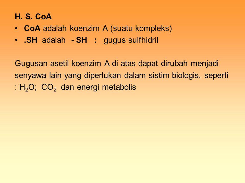 H. S. CoA CoA adalah koenzim A (suatu kompleks) .SH adalah - SH : gugus sulfhidril. Gugusan asetil koenzim A di atas dapat dirubah menjadi.