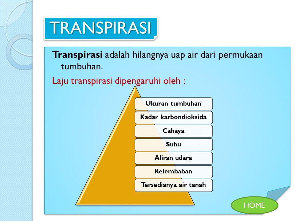 TRANSPIRASI Transpirasi adalah hilangnya uap air dari permukaan tumbuhan. Laju transpirasi dipengaruhi oleh :