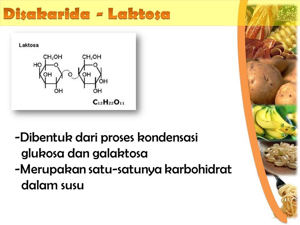 Disakarida - Laktosa Dibentuk dari proses kondensasi