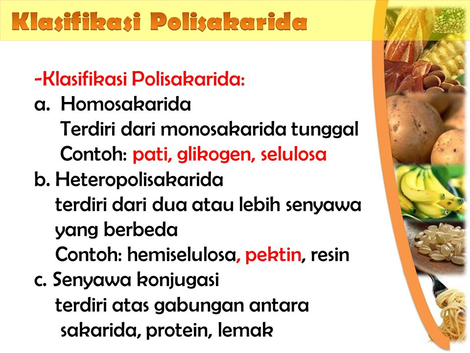 Klasifikasi Polisakarida