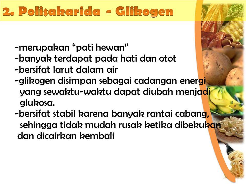 2. Polisakarida - Glikogen