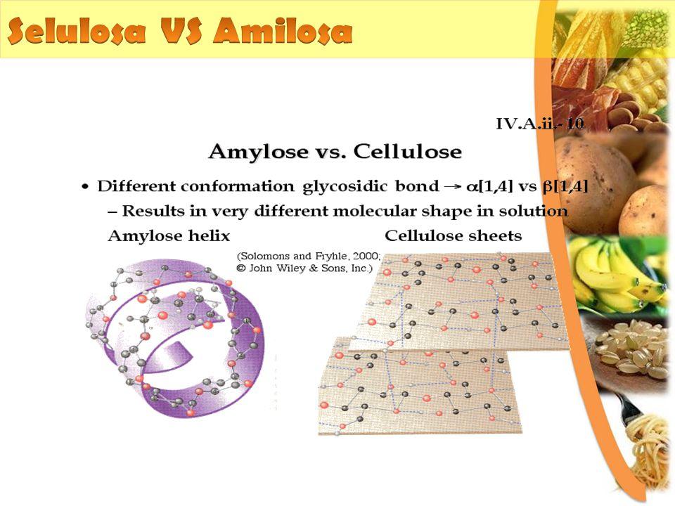 Selulosa VS Amilosa