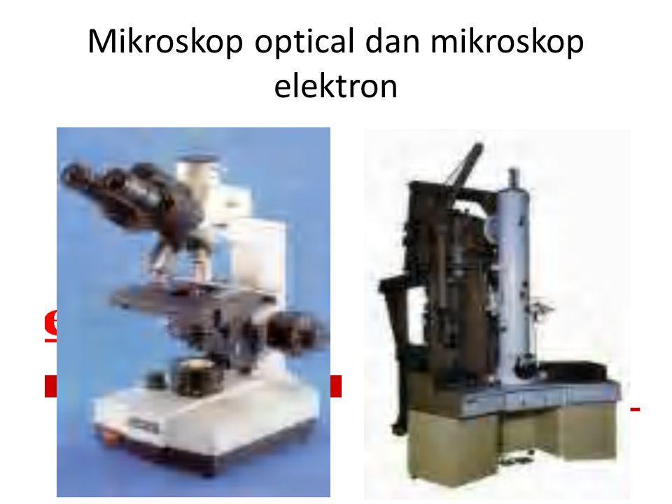 Mikroskop optical dan mikroskop elektron