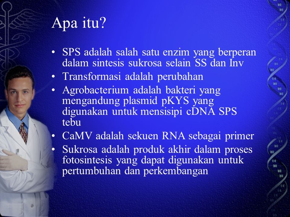 Apa itu SPS adalah salah satu enzim yang berperan dalam sintesis sukrosa selain SS dan Inv. Transformasi adalah perubahan.