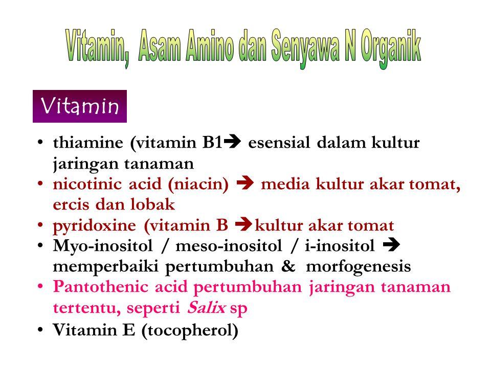 Vitamin, Asam Amino dan Senyawa N Organik