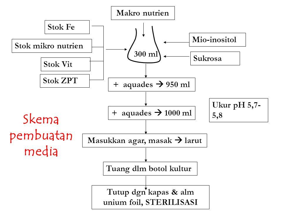Skema pembuatan media Makro nutrien Stok Fe Mio-inositol