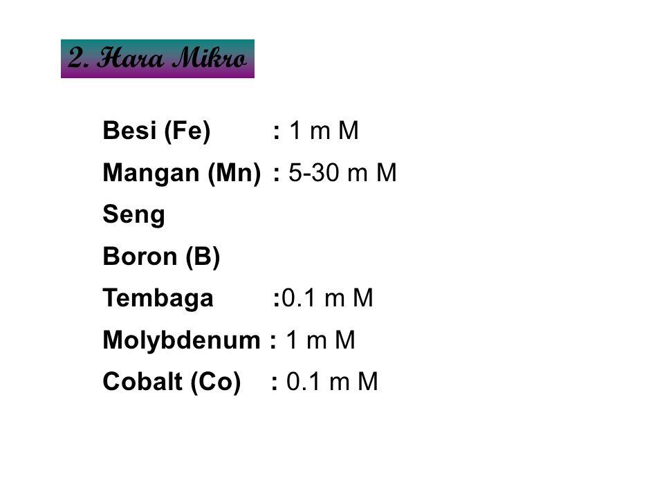 2. Hara Mikro Besi (Fe) : 1 m M Mangan (Mn) : 5-30 m M Seng Boron (B)