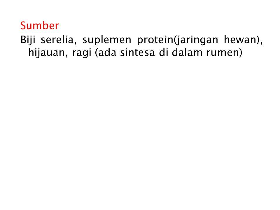 Sumber Biji serelia, suplemen protein(jaringan hewan), hijauan, ragi (ada sintesa di dalam rumen)