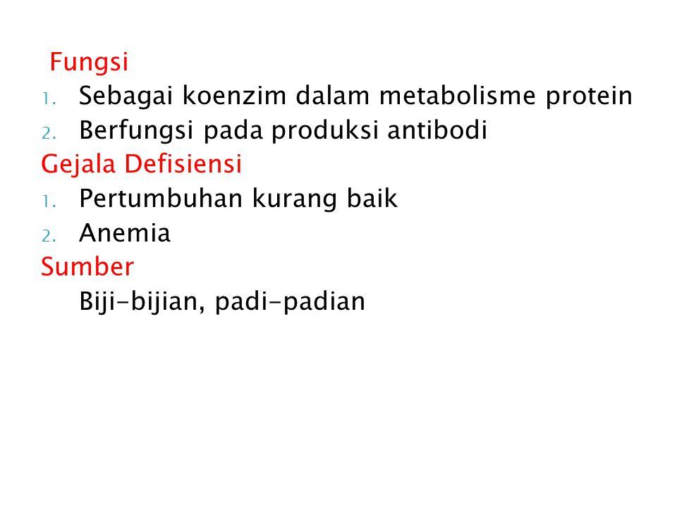 Fungsi Sebagai koenzim dalam metabolisme protein. Berfungsi pada produksi antibodi. Gejala Defisiensi.