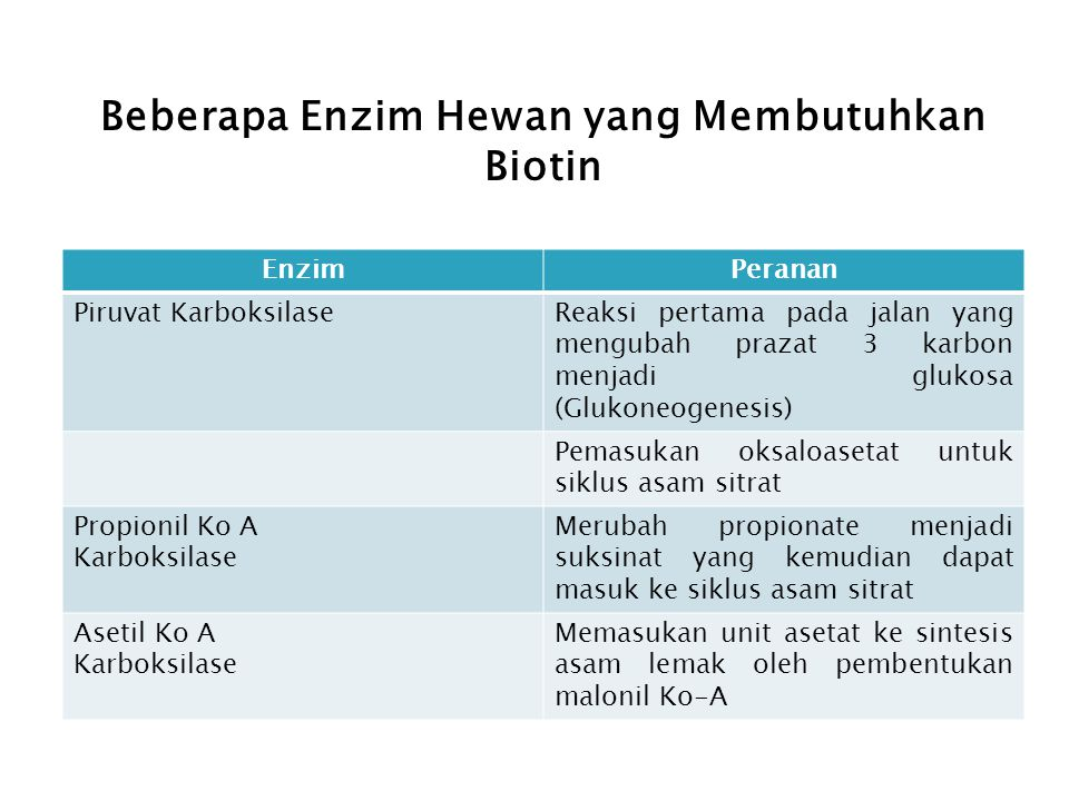 Beberapa Enzim Hewan yang Membutuhkan Biotin