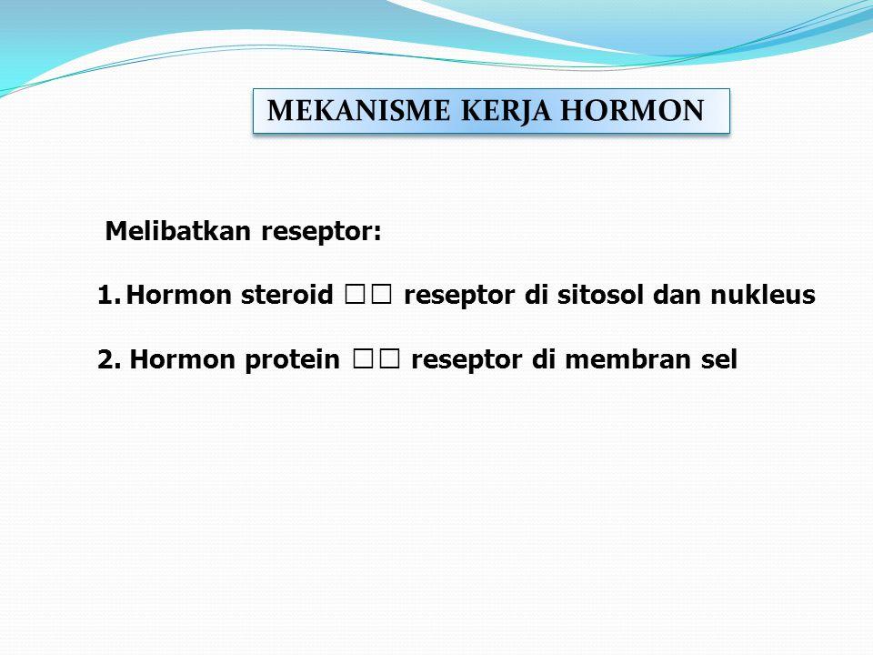 Hormon steroid  reseptor di sitosol dan nukleus