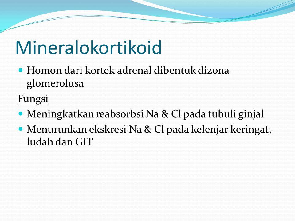 Mineralokortikoid Homon dari kortek adrenal dibentuk dizona glomerolusa. Fungsi. Meningkatkan reabsorbsi Na & Cl pada tubuli ginjal.