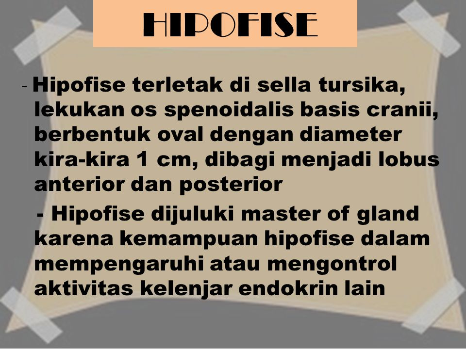HIPOFISE