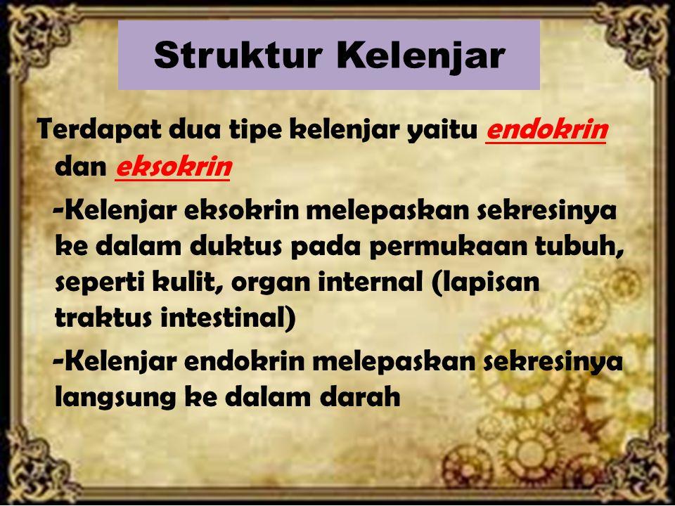 Struktur Kelenjar
